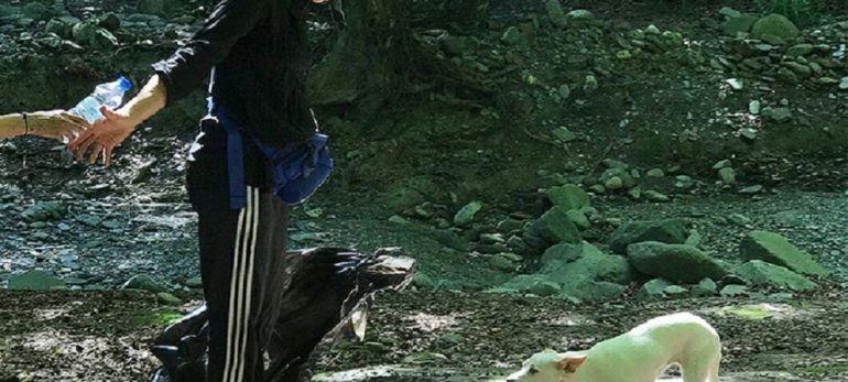 جمع آوری زباله توسط هدیه تهرانی