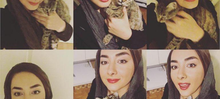 مرگ گربه هانیه توسلی مهم ترین خبر در این روزها