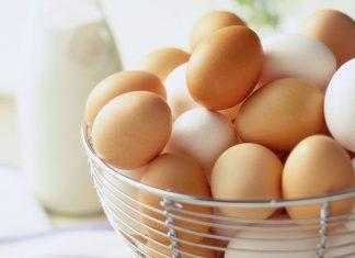 اردور تخم مرغ
