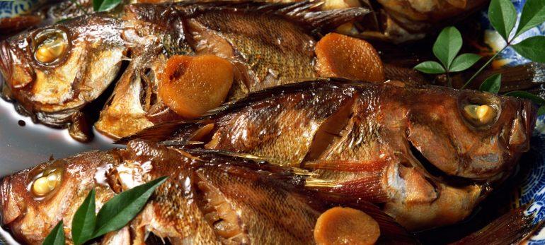 خوراک ماهی اسقمری(خال مخالی)