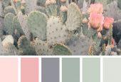 مبانی رنگ در دکوراسیون داخلی