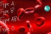 آشنایی با علل تفاوت افراد در گروه خونی و تفاوت های ژنتیکی