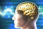 ارتباط بین ضربه به سر و زوال عقل