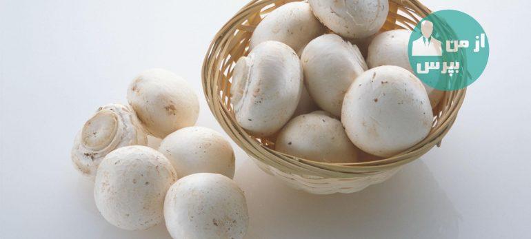 هشدار برای قارچ های سمی