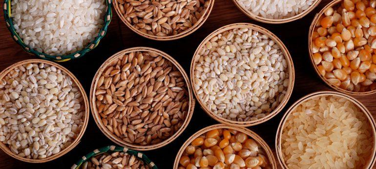 چه مواد غذایی باعث تقویت حافظه می شوند؟