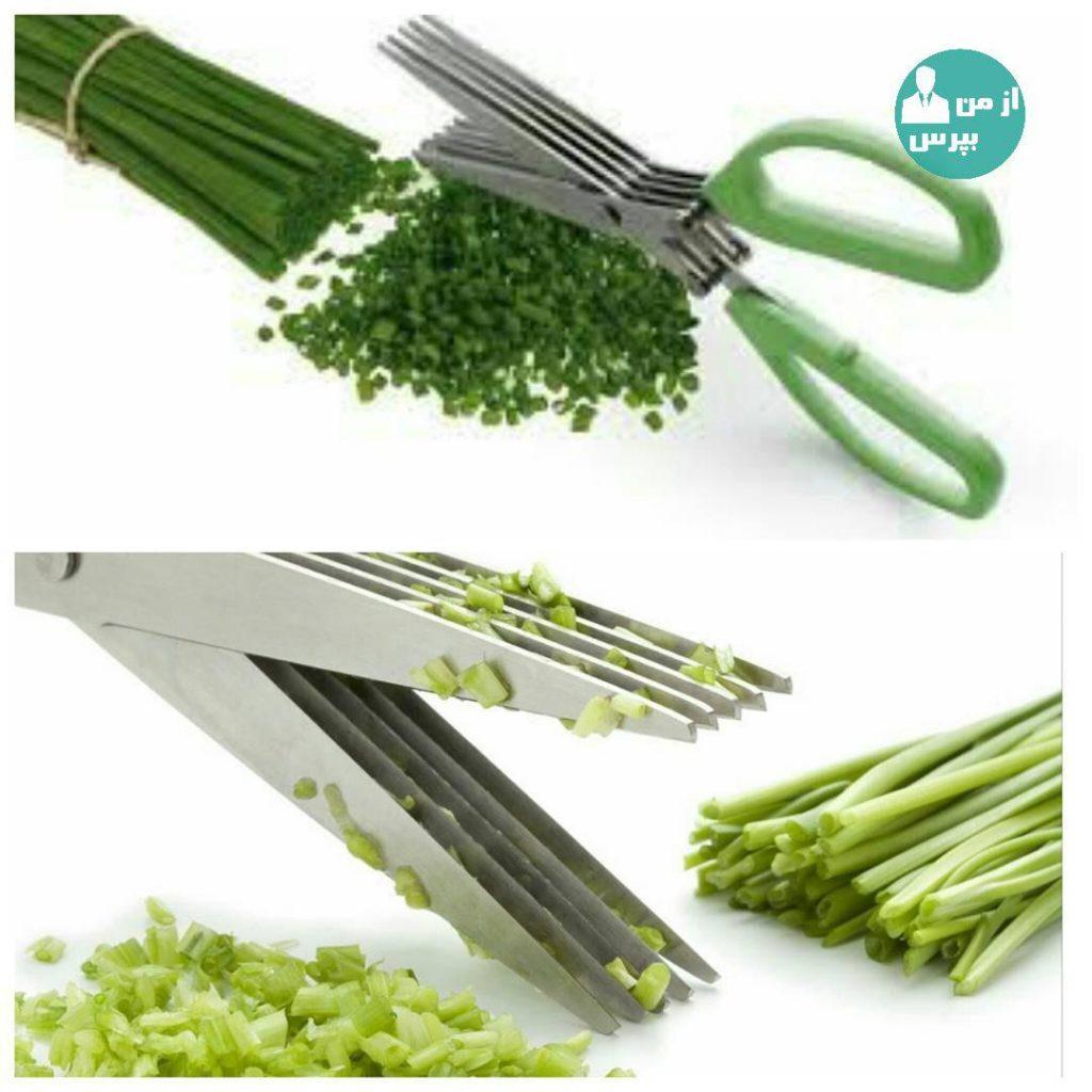 سبزی ها