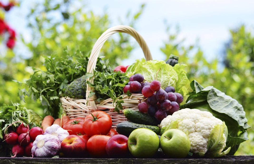 غذاهایی که می تواند در قوای جنسی شما تاثیرگذار باشد