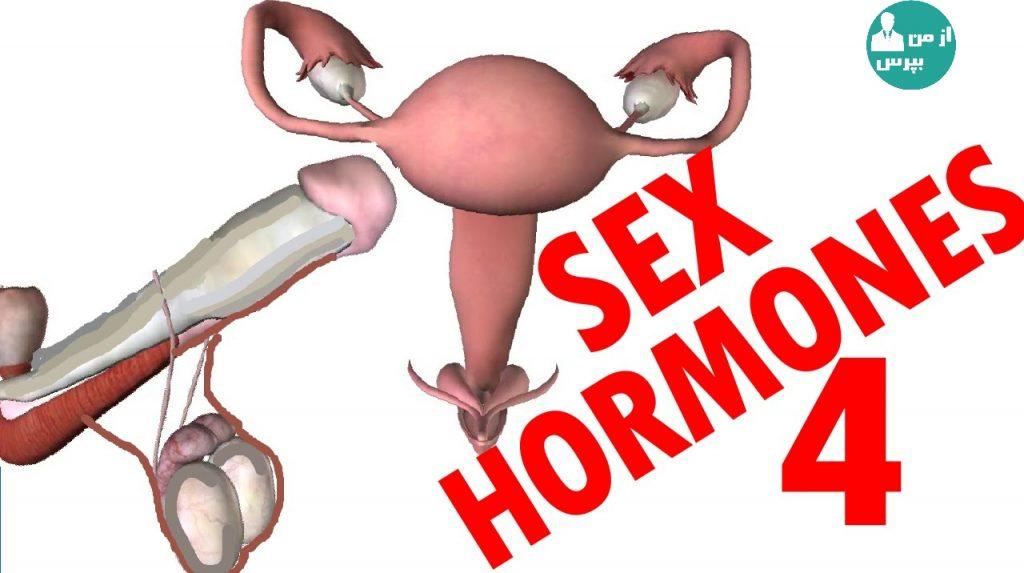 هورمون جنسی